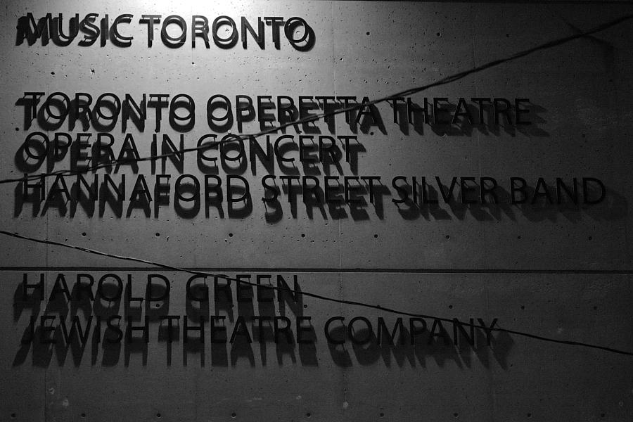 Toronto Photographer © Ardean Peters