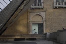 'Bird in the window' - Copyright Toronto Photographer Ardean Peters